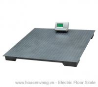 Electronic FS1 - scale
