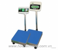 Heavy duty bench scale JPS